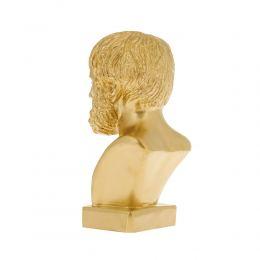 Άγαλμα, Αριστοτέλης Προτομή, 24 cm, Χρυσό 3